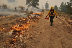 DSC_0772 (tristan_baurick) Tags: chelan firefighters wildfire easternwashington backburn driptorch chelanfire chelancomplex