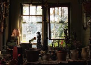 54/ windows & doors ~the sequel~