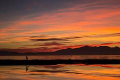 IMG_9170_adj (md93) Tags: sunset