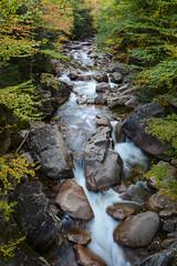 Flume Gorge (sarah_presh) Tags: usa holiday newhampshire whitemountains roadtrip franconianotch whitemountainnationalforest flumegorge nikond7100