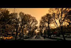 PEDESTRIAN BOULEVARD, ESFAHAN, Iran (..friend_faraway..) Tags: street city travel people boulevard angle iran wide middleeast streetfurniture esfahan ultra median isfahan pedestrianwalkway nikond300s