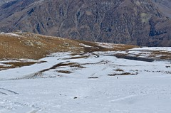 DSC_4213_00224 (Anil_R) Tags: snow manali rohtangpass himachalpradesh rohtang