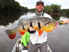 Amazonia 2012 (30)