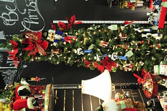 "The Most Wonderful Time of The Year (EDWW day_dae (esteemedhelga)™) Tags: holidayseason happyholidays seasongreetings merrychristmas merrifieldgardencenter stockings christmastrees holiday cheer wreath snowflakes santa santaclaus st nicholas ornaments snow globe snowman reindeer jolly angels christmas holidaydecornativity ""northpole"" ""sleighride"" holly ""christchild"" bells ""artificialtree"" carolers caroling ""candycane"" ""gingerbread"" garland elf elves evergreen ""feliznavidad""frostythesnowman"" ""giftgiving"" goodwill icicle ""jesus"" ""joyeuxnoel"" kriskringle"" manger mistletoe nutcracker partridge poinsettia rejoice scrooge ""sleighbells"" ""stockingstuffer"" tinsel ""wisemen"" ""wrappingpaper"" yule yuletide festive bethlehem ""hohoho"" illuminations ""twelvedaysofchristmas"" ""winterwonderland"" xmas bauble esteemedhelga edww daydae merrifield gardening center"