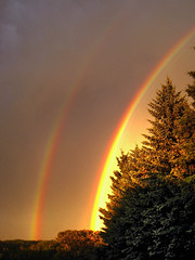 Sunset Double Bow (erykah36) Tags: trees red two orange canada green nature colors yellow landscape rainbow colorful glow purple natural bright double alberta bow evergreens glowing twice carvel shining