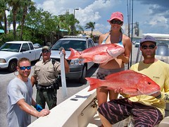 Red Snapper (MyFWCmedia) Tags: redsnapper le boating snapper catch myfwc fwc floridafishandwildlife conservation meeting myfwccom florida commissionmeeting commission fwccommission staugustine fish wildlife fishing angler research