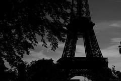 Hommage aux morts à Paris (Loran de Cevinne) Tags: blackandwhite paris france toureiffel iledefrance terrorisme attentats 13novembre2015