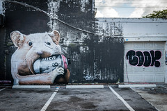 Nom (waarondaniel) Tags: street urban streetart art animal graffiti nikon paint industrial miami cartoon hamster gentrification wynwood d3300