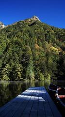 Hodaka Shrine (KWAN9LEE) Tags: sky lake tree pool pond holy sacred