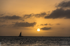 Sunset 1.0 || Key West || Florida (gauss2402) Tags: nikond7100 december 2016 weather nature beauty birds cruise gulfofmexico orange composition landscape sunset sunsetpier mallorysquare florida keywest