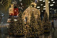 2016 Frankfurt MyZeil - Weihnachtsbäume mit Rentier (mercatormovens) Tags: weihnachten xmas weihnachtsdekoration weihnachtsmarktfrankfurt advent myzeil frankfurt shoppingcenter weihnachtsbäume renntier