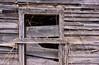 (jtr27) Tags: dsc02837e jtr27 sony alpha nex7 nex emount mirrorless sigma 60mm f28 dn dna dnart sigmaart barn shed weathered wood maine newengland wabisabi impermanence entropy