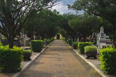 Cemitério (Vincent Zanicheli) Tags: cruz pedra cemitério dia diferente tudo depende do seu olhar pirassununga brasil interior são paulo céu lindo azul estatua arquitetura escultura capela