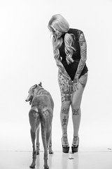 DSC_3194 (Lopshire Photography) Tags: model tattoos ladiesofmetal alternative altmodel photostudio sponsoredphotographer savageuniversalcorporation sigmaphoto bowens pocketwizards bts greyhound