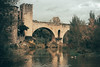 Besalú (fgazioli) Tags: besalu espanha spain europe eurotrip travel bestplacestogo medieval 2016 landscape river lake outono autumn