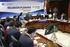2017-01-30 y 31 Reunión Plenaria y C.P. GPPAN (3)