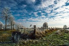 Friesland IV (Robin Kelderman) Tags: heerenveen winter friesland fryslan wit sneeuw cold snow white kalt koud