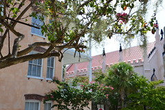 Charleston 46 (Krasivaya Liza) Tags: charleston sc southcarolina carolinas architecture architectural buildings city town village south southern charm charming quaint french influence jewelofthesouth