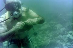 n0005.20 (avaragado) Tags: barbados coralreefclub fd197504 fd197604 fd197905 n0005 tonysmith