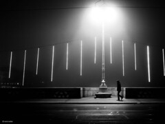 What will happen to my next step (René Mollet) Tags: fog foggy mist misty street streetphotography shadow silhouette step blackandwhite bw basel xmaslights light renémollet ©renemollet monchrom monochromphotographie night nightshot nightwalker