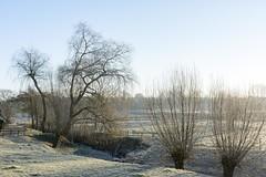 Koude ochtend in Limburg. (aj.lindeboom) Tags: winter koude limburg