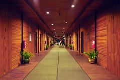 manvsnature (melintangnyukang) Tags: longhouse rumah panjai iban