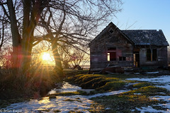 Paradise lost (Brian Eagar Nature Photography) Tags: building farm house delapidated disrepair abandoned lost sunstar sunray afternoon winter 2017 february fuji xpro2 xf23f2 wood tree sun snow spring starburst ray light grass