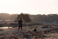 Hello, It's Me (jordandea) Tags: beach california crissyfield dog fujifilm fujifilmxt2 goldenhour sand sanfrancisco sf sunlight sunset sunshine wishbone xt2