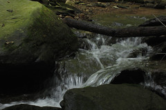 running water (Molly Des Jardin) Tags: park wood bridge trees usa water rock stone creek forest flow waterfall moss log rocks branch state pennsylvania stones rocky bank running boulder boulders shore fallen lancaster stick algae 2014 susquehannock drumore 43215mm