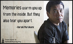 SpiritualCleansing.Org - Love, Wisdom, Inspirational Quotes & Images (SpiritualCleansing) Tags: pain warm memories inside feelings harukimurakami consequences tearapart