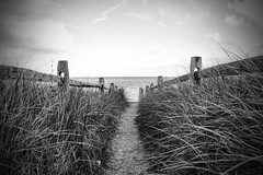 IMG_0578 copy (Silverio Photography) Tags: ocean blackandwhite beach photoshop canon marthas capecod sigma elements 1770 vignetting hdr vinyard topaz adjust massachuetts