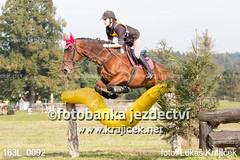 163L_0092 (Lukas Krajicek) Tags: military czechrepublic cz kon koně vysočina vysoina southbohemianregion blažejov dvoreček všestrannost dvoreek