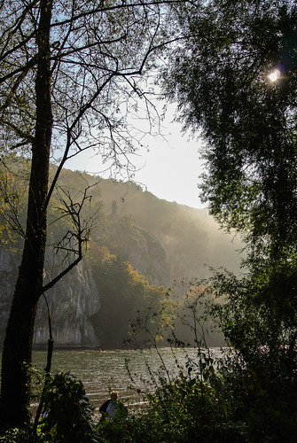 Autumn morning at the River Danube ...