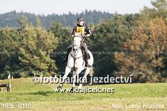 163L_0110 (Lukas Krajicek) Tags: military czechrepublic cz kon koně vysočina vysoina southbohemianregion blažejov dvoreček všestrannost dvoreek