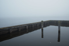 reflection symmetry (flegontovna) Tags: wood morning lake abandoned nature water birds fog specland