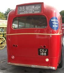 London transport Q83  rear end Brooklands 18/10/15. (Ledlon89) Tags: bus london buses transport lt weybridge londonbus brooklands londonbuses vintagebuses lte lptb londonbusmuseum