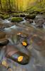 Oconaluftee River (Avisek Choudhury) Tags: longexposure autumn river landscape fallcolor gitzo greatsmokymountain littleriver oconalufteeriver nikond800 avisekchoudhury acratechballhead nikon1635mm httpwwwaviseknet avisekchoudhuryphotography