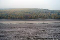 RU2021 伊爾庫次克州 (S.K. LO) Tags: russia easternsiberia irkutskregion