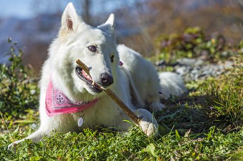 Yuka and her Stick
