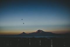 Awaking. (Ani ♠ Melikyan) Tags: armenia masis ararat mountararat հայաստան արարատ մասիս masissis