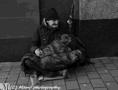 A homeless man & dog in Leeds - but he does have a house!!!! (MAMF photography.) Tags: christmas street city uk greatbritain winter england blackandwhite bw cold monochrome animal photography town photo blackwhite google nikon flickr noir december image noiretblanc zwartwit unitedkingdom britain yorkshire united homeless negro north leeds kingdom oldman gb upnorth zwart pretoebranco schwarz westyorkshire onthestreet charleton greatphoto googleimages nikond3200 enblancoynegro ls1 zwartenwit greatphotographers d3200 mamf inbiancoenero leedscitycentre schwarzundweis mamfphotography