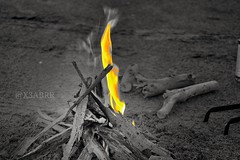 #_ # #colorsplash #colorful #hdr #nature #blackandwhite #ksa #fire # # # # # # # # #sonyalpha #sony #wood  #goodmorning  # # # # # # . . . # # (photography AbdullahAlSaeed) Tags: wood blackandwhite nature fire colorful sony goodmorning colorsplash hdr   ksa          sonyalpha