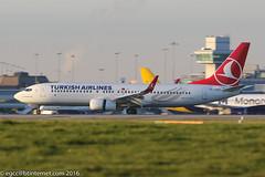 TC-JVY - 2016 build Boeing B737-8F2, arriving on Runway 23R at Manchester (egcc) Tags: 5983 60024 b737 b737800 b7378f2 b737ng boeing egcc kahramankazan lightroom man manchester ringway staralliance tcjvy thy tk turkishairlines