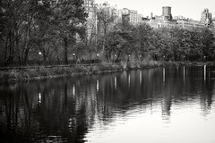 Jacqueline Kennedy Reservoir _ detail _ bw (Joe Josephs: 2,861,655 views - thank you) Tags: joejosephs nyc newyorkcity photojournalism travelphotography parks urbanparks urbanlandscapes centralpark jacquelinekennedyonassisreservoir landscapephotography landscapes water waterreflections