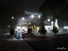 Nat1 (antocalv) Tags: christmas natale street streetphotography desaturate nigth long exposure
