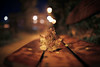 Leaf (Digic-Vision) Tags: canon eos 6d sigma 35mm 14 art leaf bench night dof