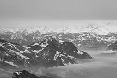 View from Pilatus (mightymightymatze) Tags: switzerland schweiz pilatus mountpilatus blackwhite blackandwhite black white schwarzweis schwarzweiss bw alpen alps berge mountains mountain berg
