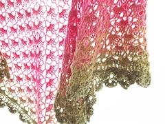 20161208_160659 (tannie) Tags: amsterdam amsterdamzuidoost colour crochet fun goudenleeuw hobby merino nederland noordholland shawl southbayshawl zuidoost green pink roze tulip
