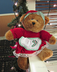 Christmas Bear Cuteness II (eoscatchlight) Tags: teddybear christmasbear christmas christmasdecoration merrychristmas cuteness phoenix arizona