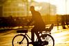 Copenhagen Bikehaven by Mellbin - Bike Cycle Bicycle - 2017 - 0029 (Franz-Michael S. Mellbin) Tags: accessorize bici bicicleta bicicletta biciclettes bicycle bike bikehaven biking copenhagen copenhagenbikehaven copenhagencyclechic copenhagencycleculture copenhagenize cycle cyclechic cycleculture cyclist cykel cyklisme denmark fahrrad fashion fiets people rower street sykkel velo velofashion vélo københavn capitalregionofdenmark dk